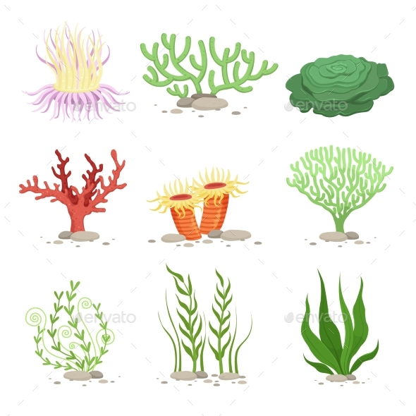 Vector Set of Underwater Plants. Funny - Miscellaneous Vectors