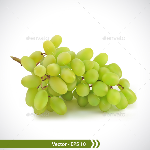 Green Grapes - Food Objects