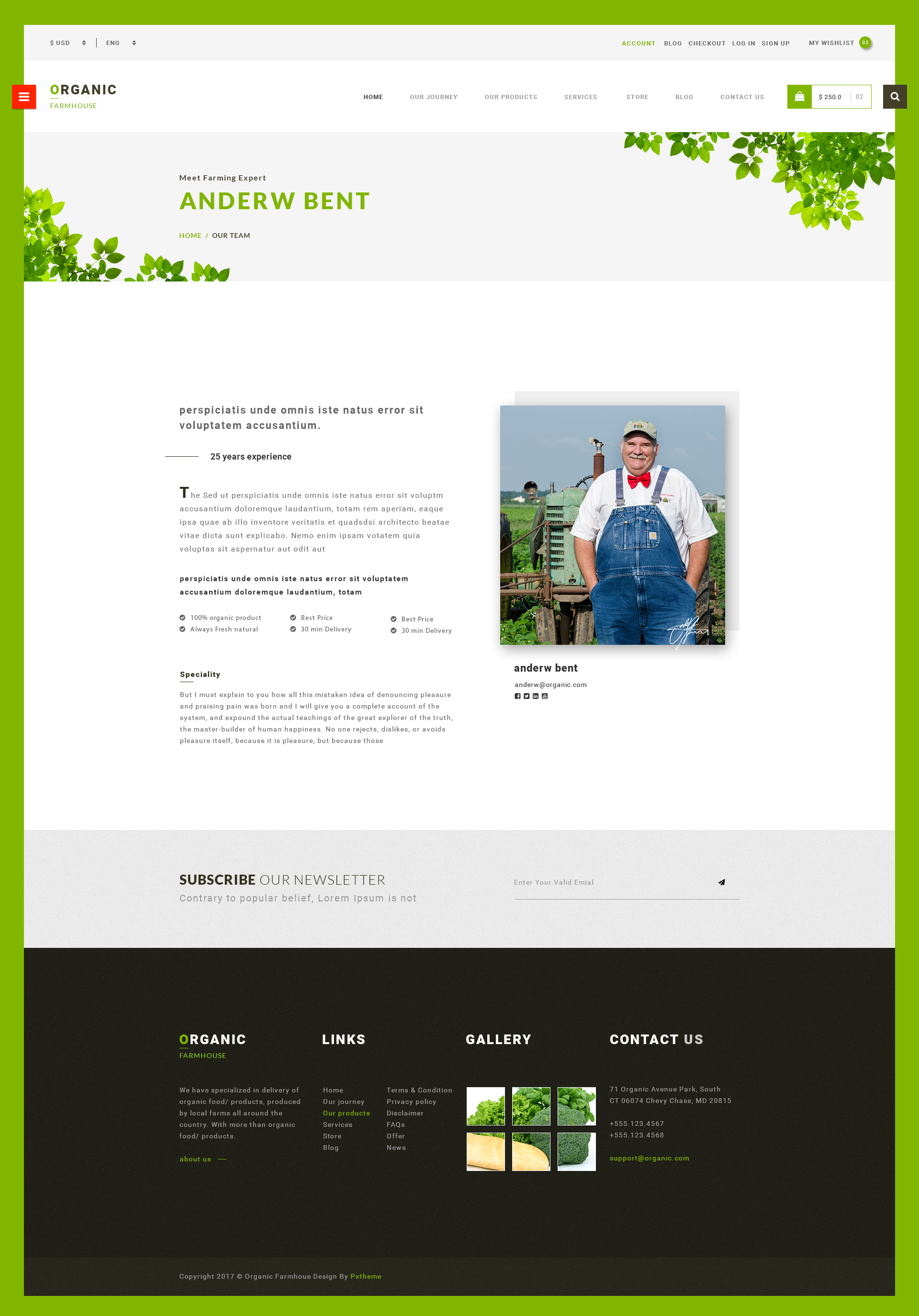 Organic Store PSD Template By Govindsaini ThemeForest - Invoice maker free download rocco online store