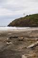 Pacific Ocean West Coast Beach Driftwood North Head Lighthouse