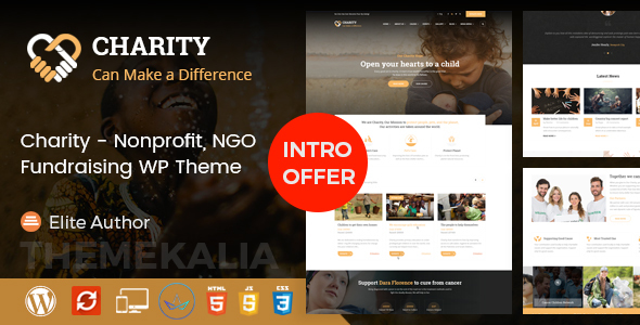 Charity – Nonprofit / Charity / Fundraising WordPress Theme