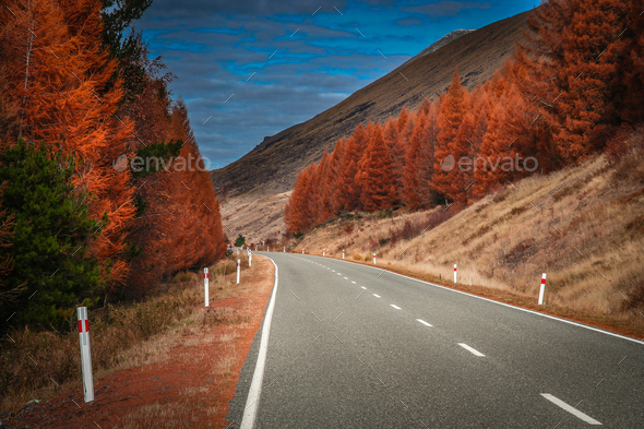 Beautiful road in New Zealand Alps - Stock Photo - Images