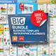 Bundle Business Infographics - GraphicRiver Item for Sale