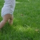 Father Helps Baby Learning To Walk - VideoHive Item for Sale