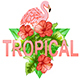 Tropical Banner with Flamingo - GraphicRiver Item for Sale