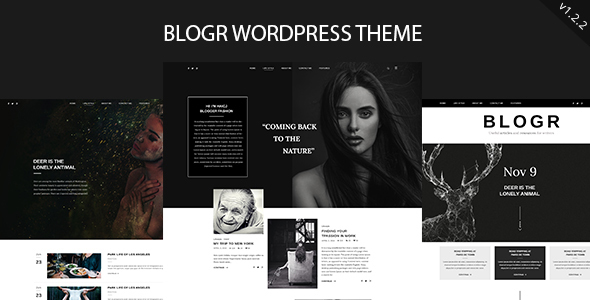 BLOGR - WordPress Theme for Special Bloggers - Personal Blog / Magazine