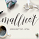 Mallicot Script - GraphicRiver Item for Sale