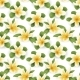 Plumeria Seamless Pattern - GraphicRiver Item for Sale