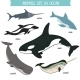 Animals Life in Ocean Isolated Vector Set - GraphicRiver Item for Sale