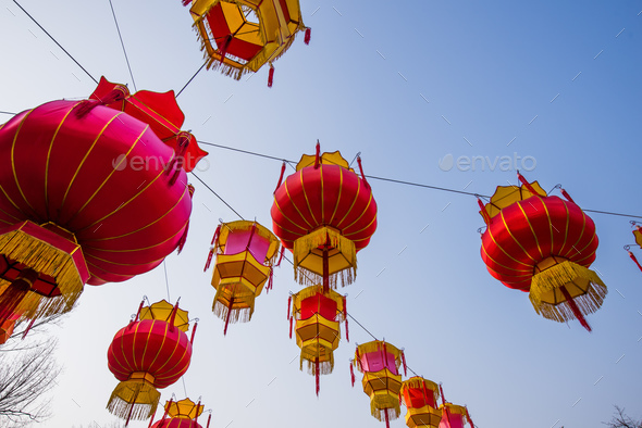 Traditional Chinese Red Lantern Hanging On Tree, celebrating New Year - Stock Photo - Images