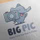 Big Picture Logo Design - GraphicRiver Item for Sale