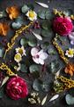 Floral leaves romance decoration freshness lush - PhotoDune Item for Sale