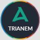 Trianem - Multipurpose Google Slides Template - GraphicRiver Item for Sale