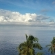 Aero View From Drone on Sea and Beach on Which Palm Trees of Bali Indonesia - VideoHive Item for Sale