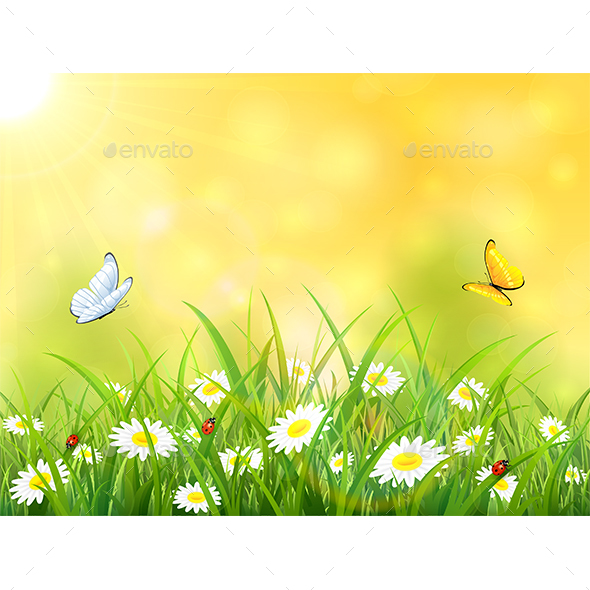 Yellow Nature Background with Sun and Butterflies - Seasons Nature