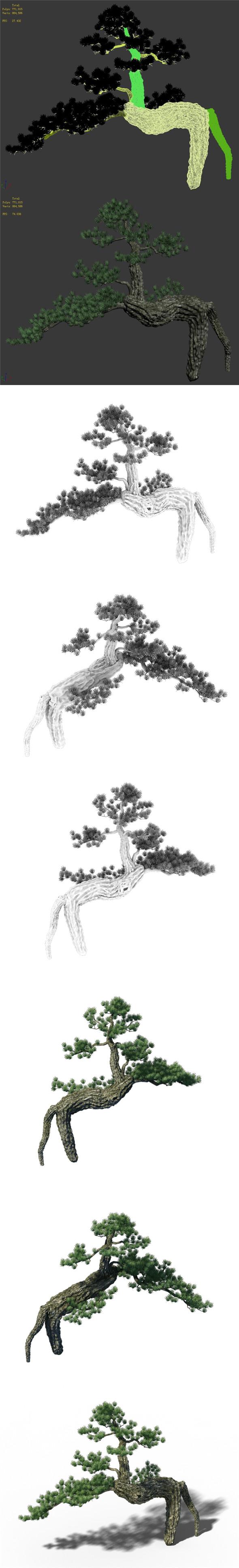 Big Tree - White Chishan - Pine 03 - 3DOcean Item for Sale