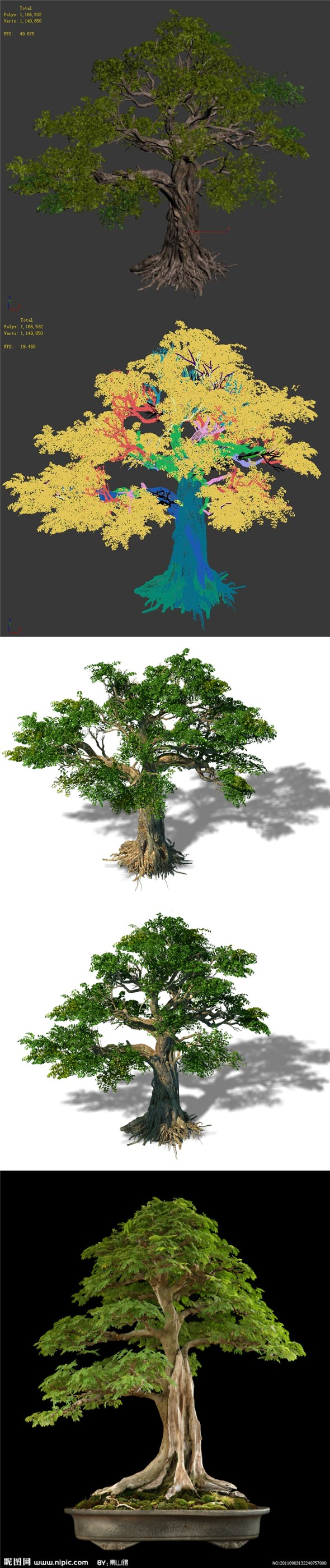 Trees - Huanglongshan trees - 3DOcean Item for Sale