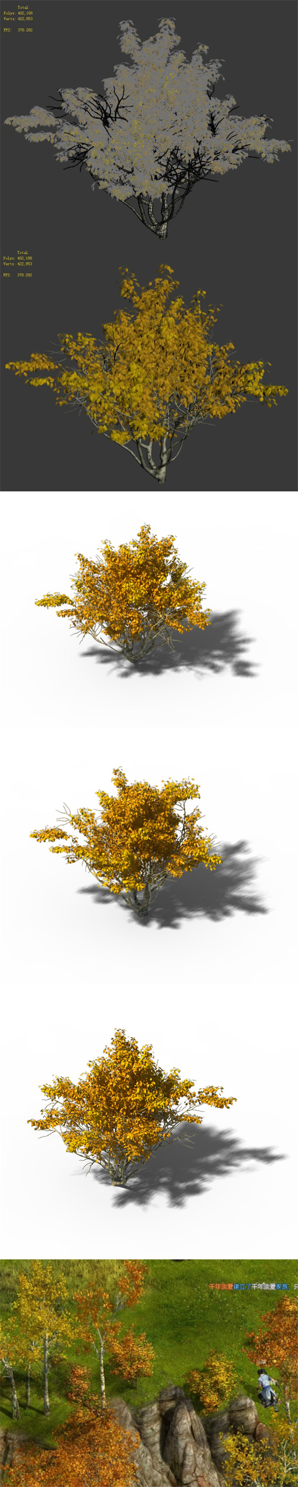 Shrub - Huanglongshan Small Tree 02 - 3DOcean Item for Sale