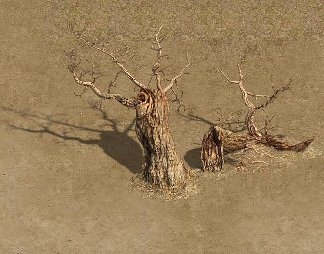 Barracks - desert Dead tree 01
