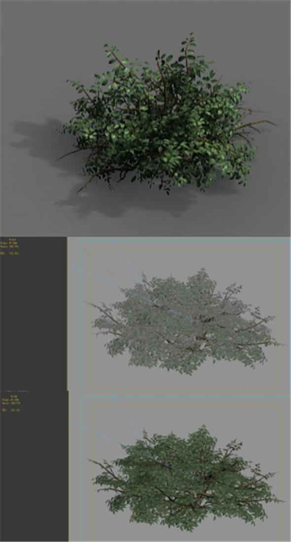 Game Models - Forest - Shrubs 07 - 3DOcean Item for Sale