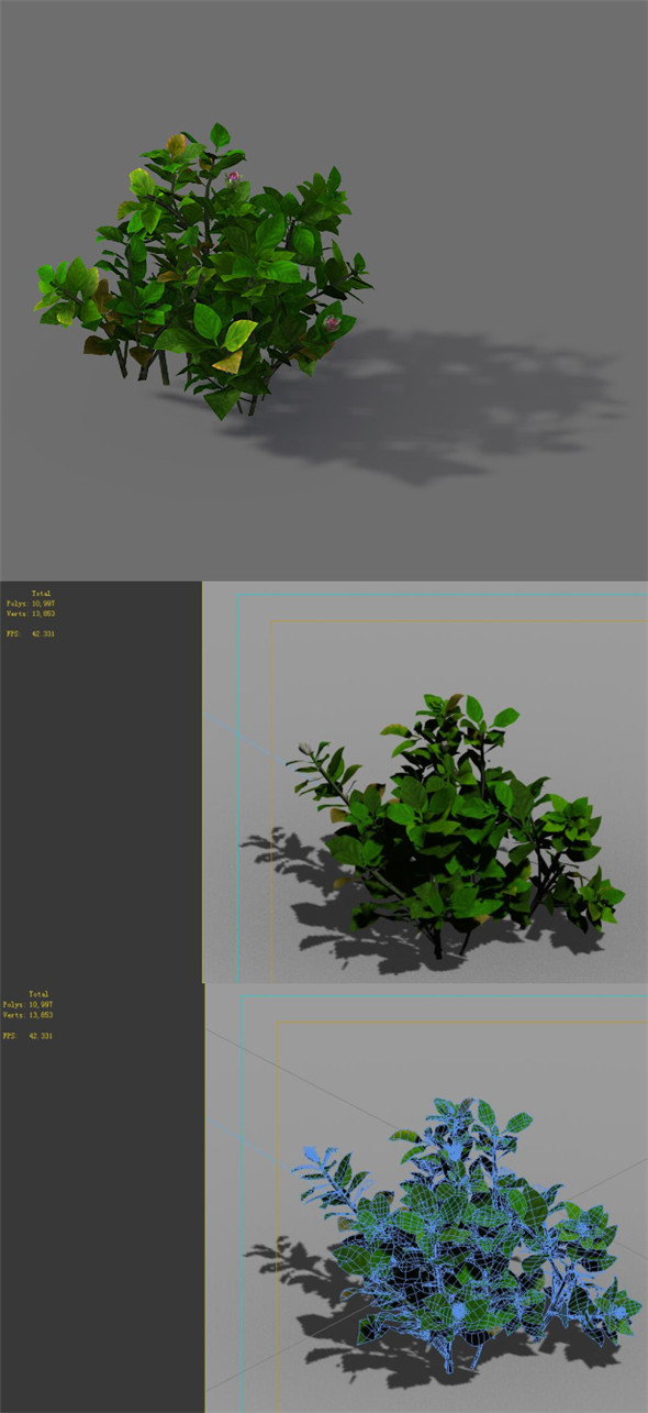 Game Models - Forest - Shrubs 12 - 3DOcean Item for Sale