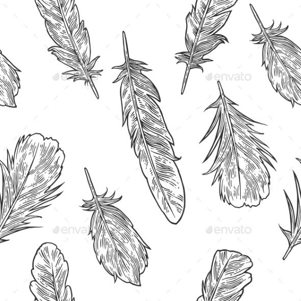 Vintage Black Vector Engraving of Feathers - Animals Characters