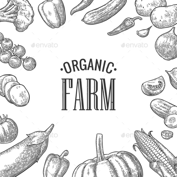 Set Vegetables and Organic Farm Lettering - Food Objects