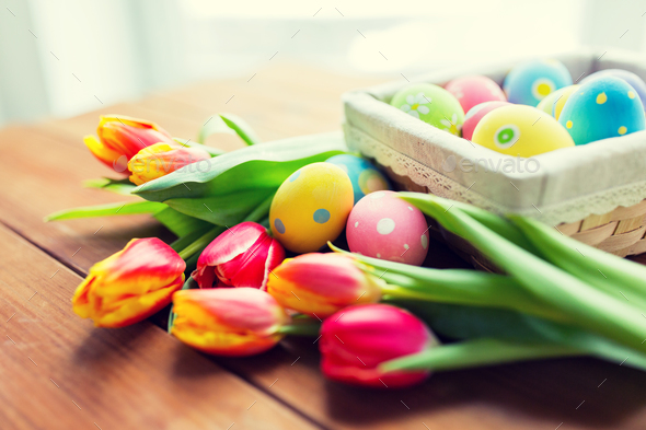 close up of colored easter eggs and flowers - Stock Photo - Images