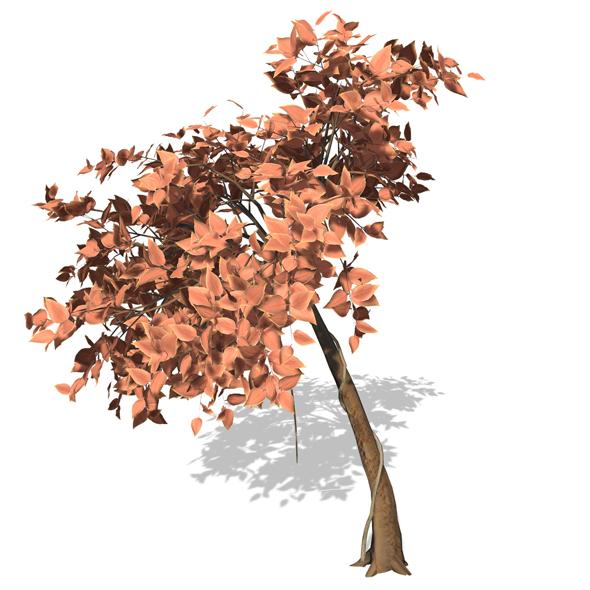 Tree - 00009 - 3DOcean Item for Sale