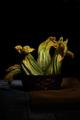 Raw Zucchini Flowers - PhotoDune Item for Sale