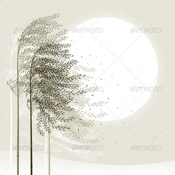 Winter Reed Background - Flowers & Plants Nature