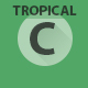 Tropical House Kit - AudioJungle Item for Sale