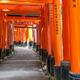 Wooden Torii Gates near Kyoto, Japan - PhotoDune Item for Sale