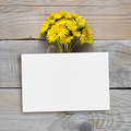Dandelion flowers and blank postcard on wooden background - PhotoDune Item for Sale