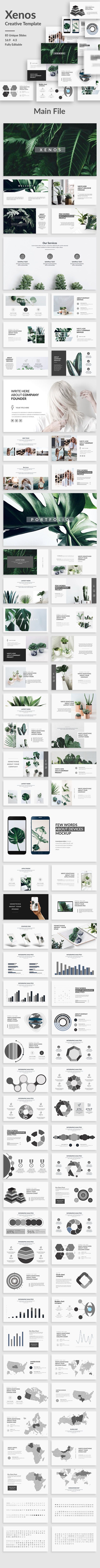 Xenos Creative Keynote Template - Creative Keynote Templates