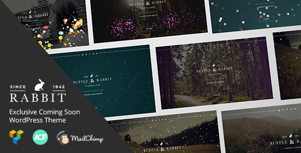 Rabbit – Exclusive Coming Soon WordPress Theme