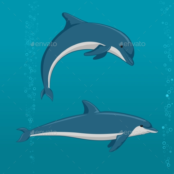 Cartoon Dolphins in Different Poses - Animals Characters