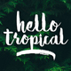 Hello Tropical - GraphicRiver Item for Sale