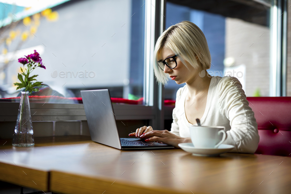 Young Focused Woman Working On Laptop In Cafe - Stock Photo - Images