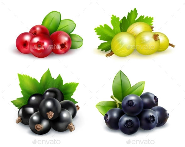 Berry Clusters Realistic Set - Objects Vectors
