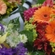 Bouquets with Prices