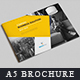 A5 Brochure & Catalog - GraphicRiver Item for Sale