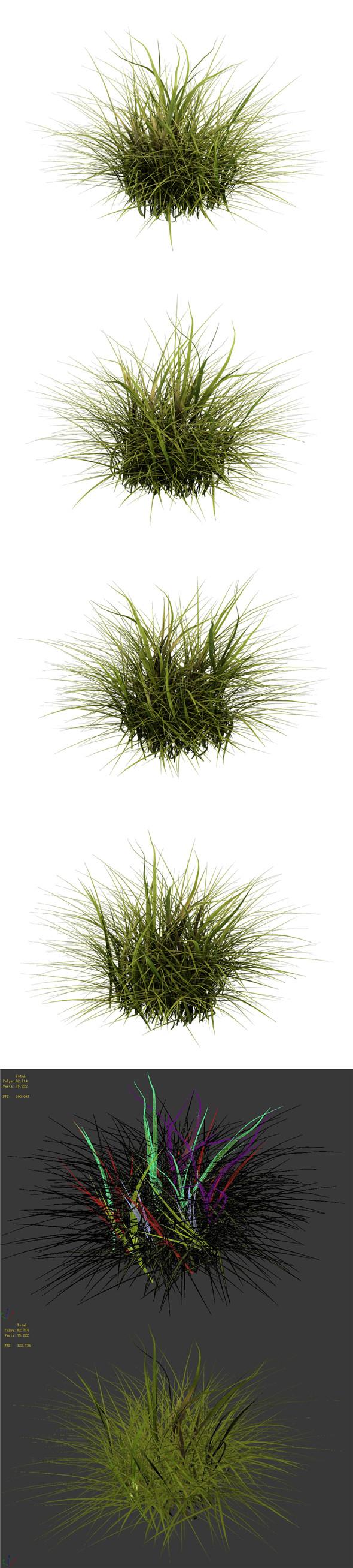General plant - flowers 34 - 3DOcean Item for Sale