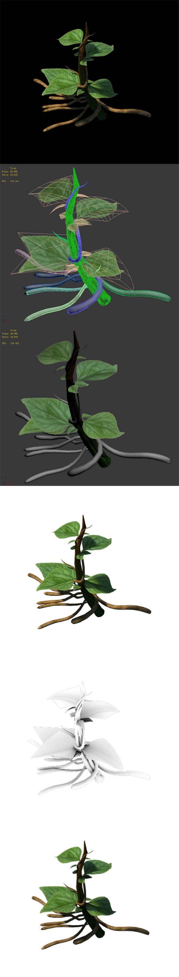 Plant Trees - Vines 01 - 3DOcean Item for Sale