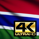 Gambia Flag - VideoHive Item for Sale