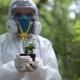 Biochemist Holding Small Plant