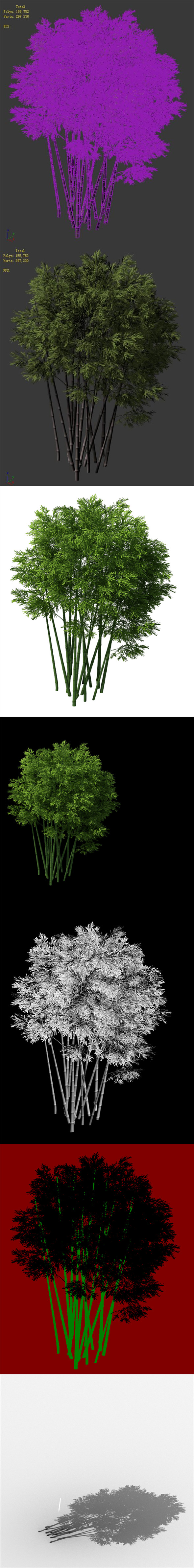 Plant - Bamboo 032 - 3DOcean Item for Sale