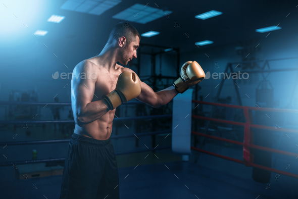 Portrait of muscular boxer in black gloves - Stock Photo - Images