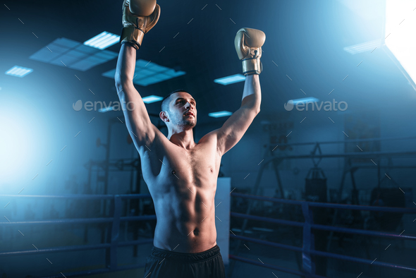 Boxer in gloves hands up on the ring, back view - Stock Photo - Images
