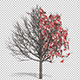Growing Chinese Yuan Money Tree - VideoHive Item for Sale